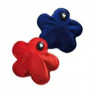 Flower shaped electric warmer (comes in red or blue)